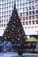 Amerikanischer weihnachtsbaum for Amerikanischer weihnachtsbaum